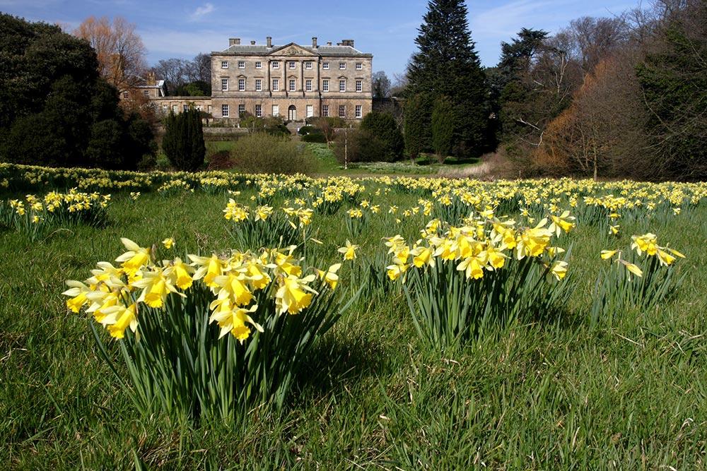 Howick-Hall-Gardens